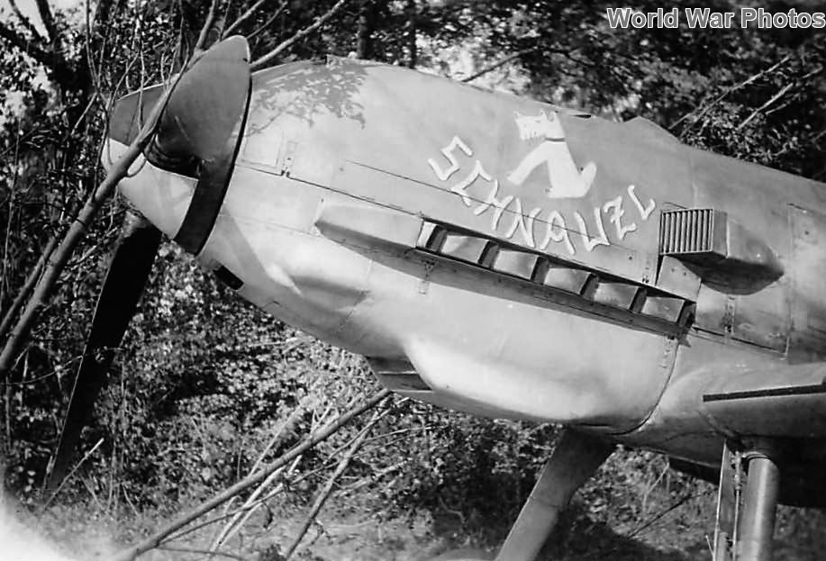 """Bf109E-3 """"Schnauzl"""" of the JG 3 piloted by Josef Heinzeller"""