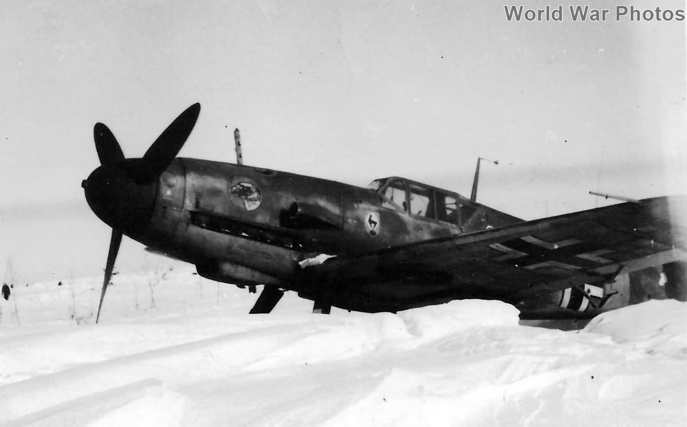 Bf109F of the Geschwader Molders