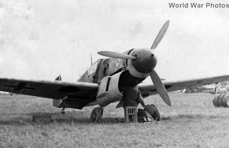 Bf109F of the JG 53 Russia