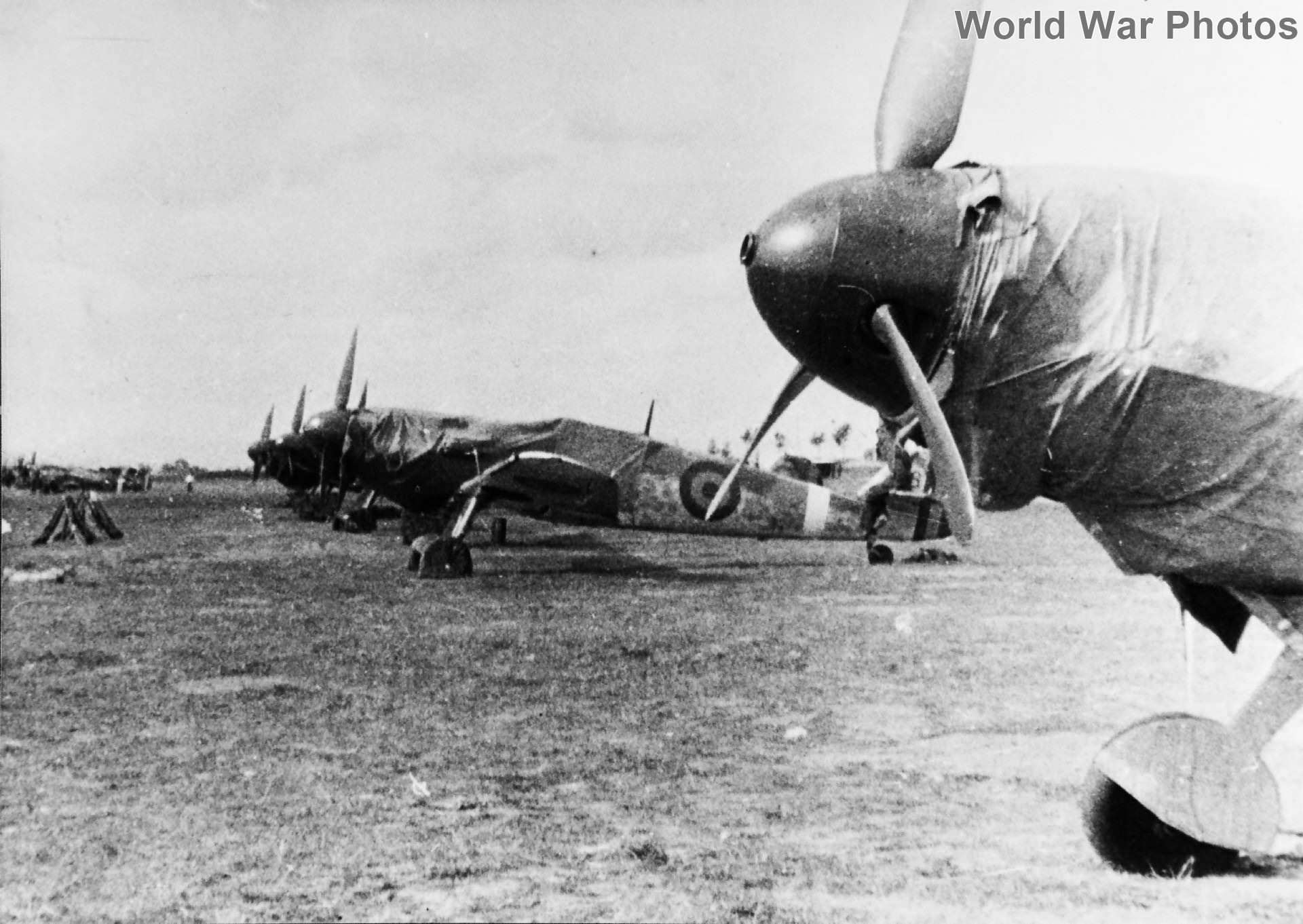 Romanian Bf 109Ga