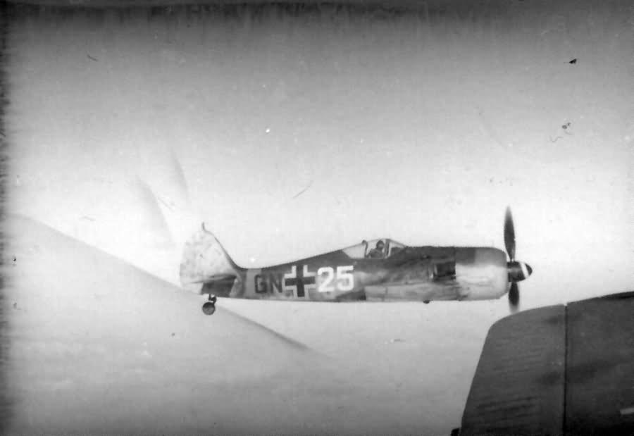 Focke Wulf Fw 190 GN+25 in flight during World War II