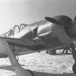 Fw 190 A 10/JG 51 in Smolensk March 1943 front