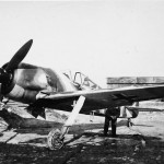 Fw 190 on field airfield
