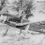 Captured Fw 190D-9 of the Papagei Staffel