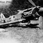 "Focke-Wulf Fw 190D ""white 61"""