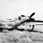 "Captured ""Dora"" Fw 190 D-13 836017 Stab/JG 26"