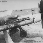 Focke-Wulf Fw 190D-9 nose