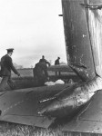 Heinkel He111 Shot down during Battle of Britain 1940