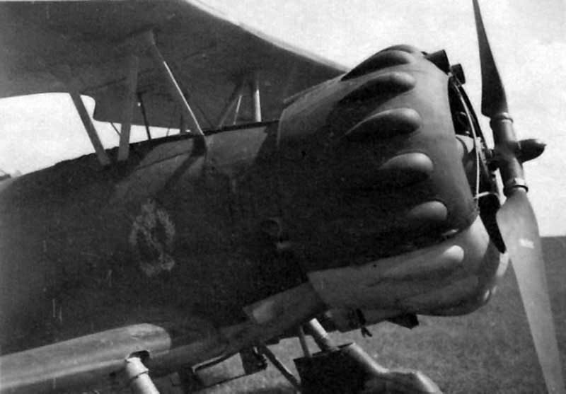 Henschel Hs 123 of the 1.(S)/LG 2 during Operation Barbarossa, Michalitzki August 1941 2