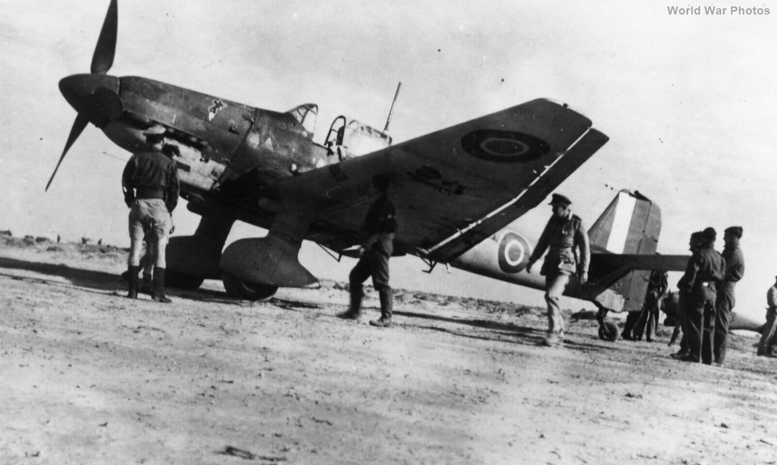 Ju 87D 213 Sqn RAF North Africa