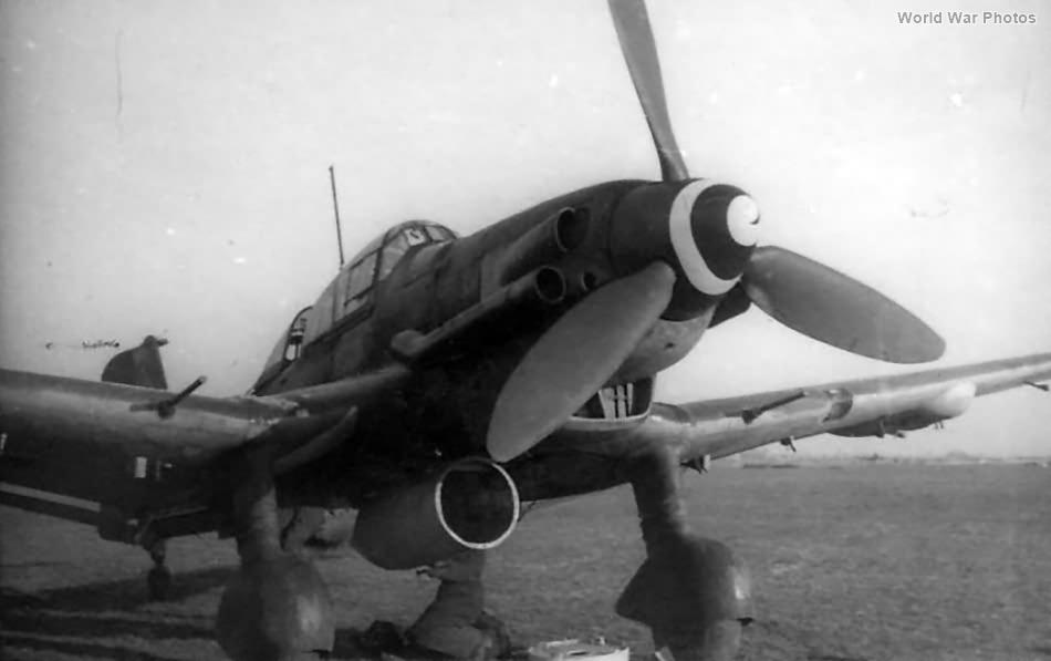 Ju 87 D-3 2NSGr 2 Koln-Ostheim mar45