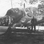 Ju87B parked near trees
