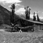 Junkers Ju 87D-3N code E8+Gl of 3/NSGr 9 1945