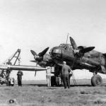 Ju 88 A 3Z+ KH 1/KG 77 with torpedo September 1943