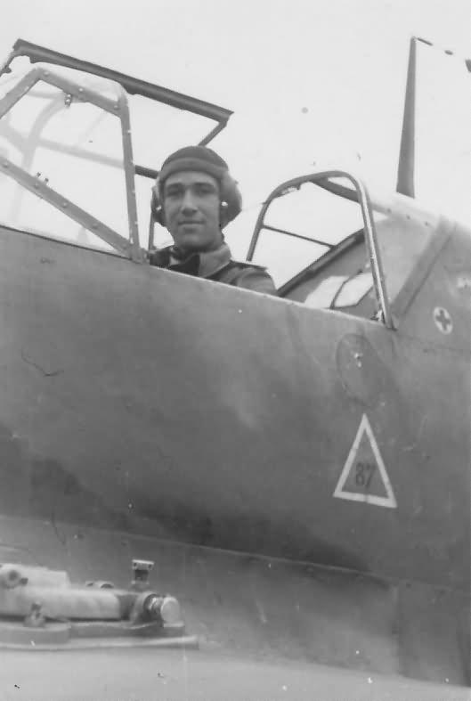 Bf109D 3.JFS 5 Toussus le Noble August 1941 pilot