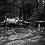 Captured Messerschmitt Bf 110G Night Fighter near Munich May 1945