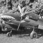 ZG76 Bf110 with sharks mouth nose art 1940