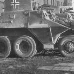 Steyr ADGZ cars in german service