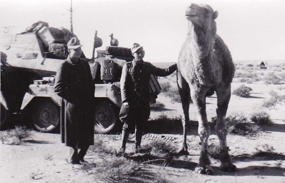 afrika korps sdkfz 263 and camel