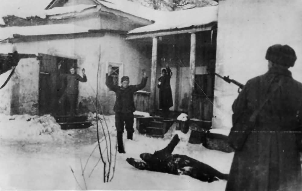 German Soldiers Surrender to Russians Troops at Stalingrad 1942