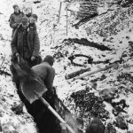 German Soldiers Digging Trenches on Leningrad Front 1941