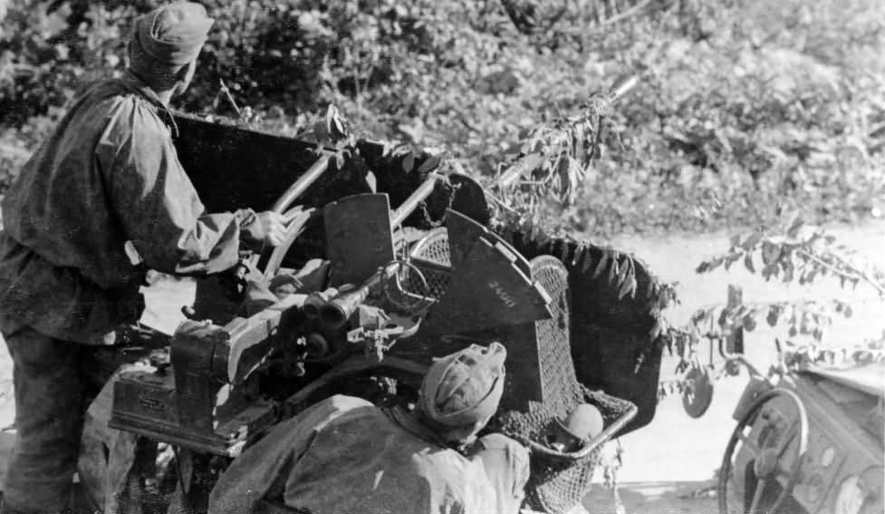 Flak 30 on SdKfz 10/4