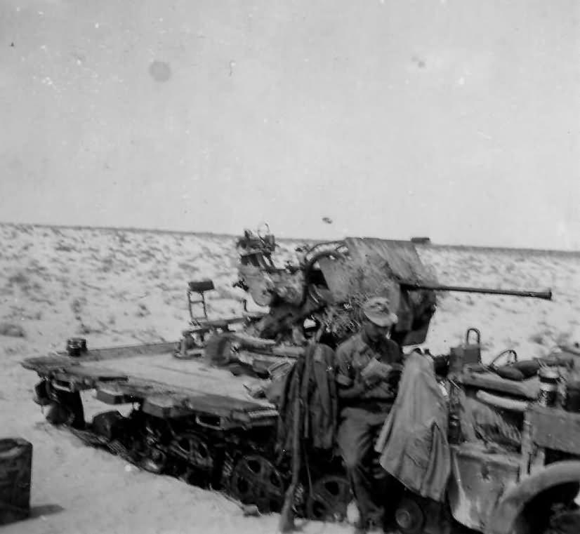 SdKfz 10/5 Afrika Korps DAK photo
