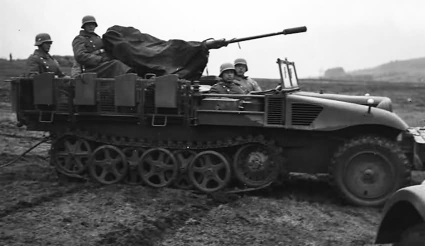 SdKfz 10 Demag D ll 3