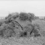 camouflaged Schutzenpanzer 1941 eastern front