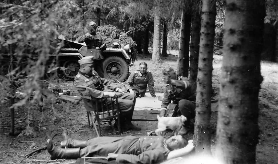 SdKfz 251 photo