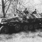 German armored personnel carrier SdKfz 251 Ausf D camo