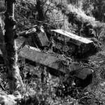 SdKfz 251 Ausf D Near Gavray France 1 August 1944