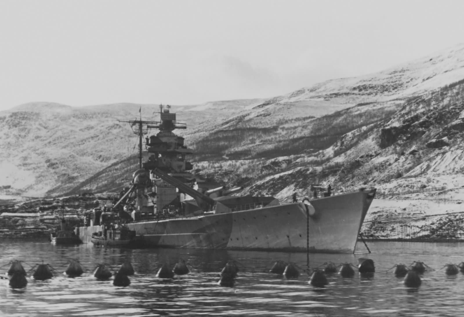 Scapa Flow At Home And Abroad