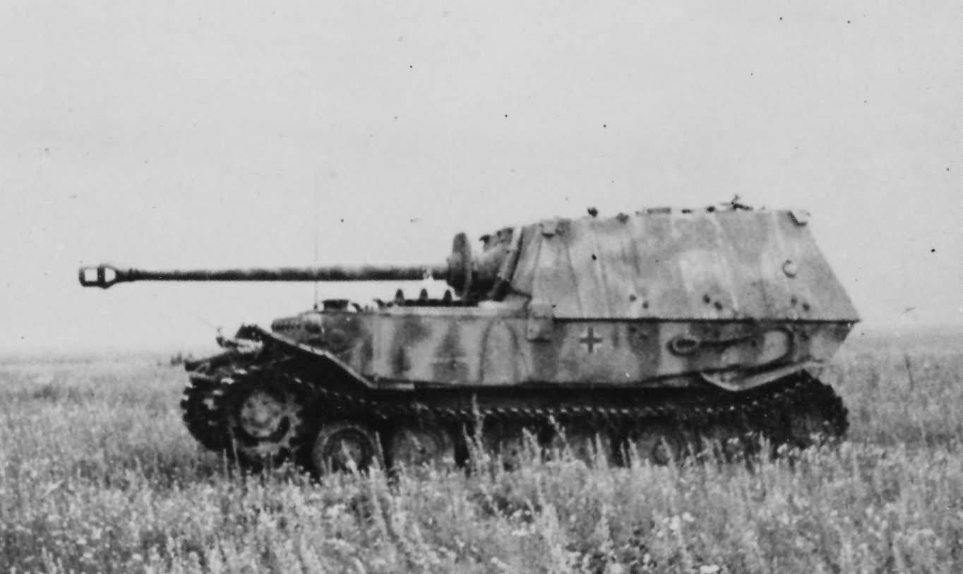 Heavy_Tank_Destroyer_Ferdinand_.jpg