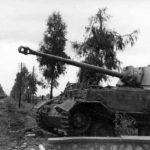 German tank destroyer Elefant 111 Italy