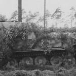 camouflaged Elefant Panzerjager Sdkfz 184