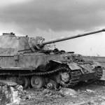 Elefant number 131 of the 1/653 Schwere Panzerjäger-Abteilung February 1944 Italy