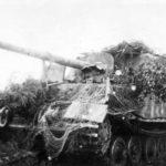 Camouflaged Panzerjäger Tiger (P) Ferdinand