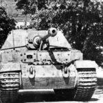 Captured Elefant of Schwere Panzerjäger-Abteilung 653