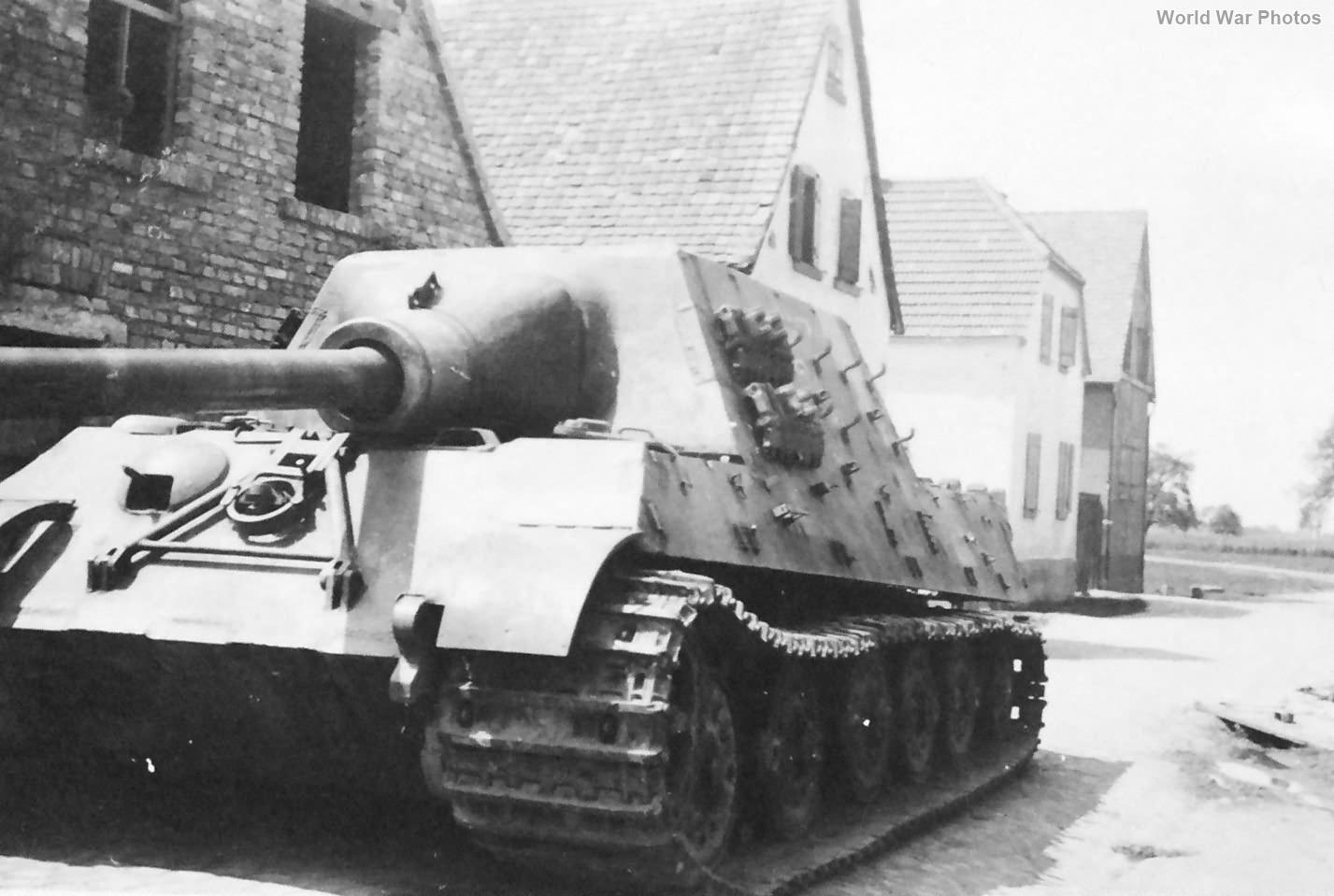 Jagdtiger of the s.Pz.Jg.Abt. 653