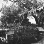 Nashorn Italy 1944 2
