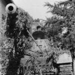 Nashorn Italy 1944 3