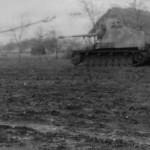 Panzerjager Hornisse Nashorn German tank destroyer 1944 eastern front
