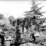 camouflaged Panzerjager Nashorn Hornisse of 525th Schwere Panzerjager Abteilung Italy