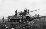 Panzerkampfwagen V Panther number 442
