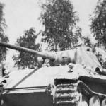 Panther Ausf D 112 Kursk