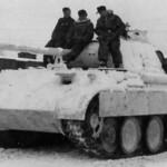 Panther winter camo