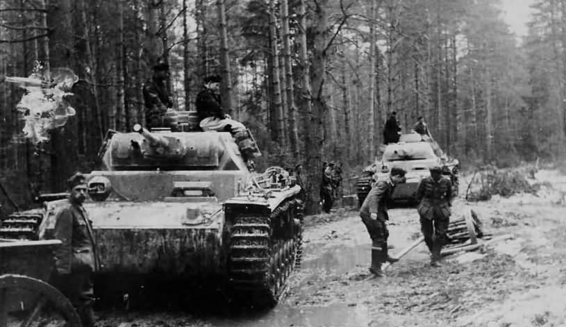 Panzer III in forest