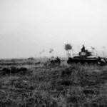 Panzer 38t R01