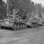 Panzer 38t column
